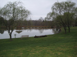 Norton Pond & the Gazebo